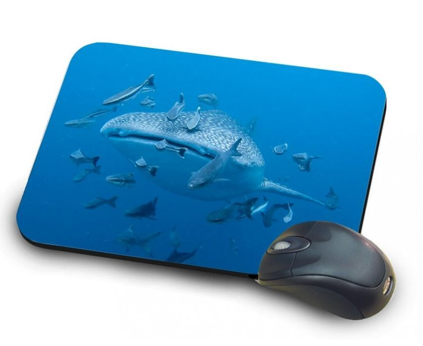 Mouse pad with marine decoration